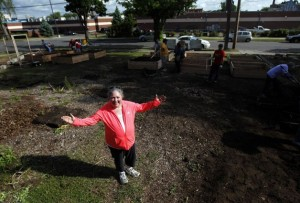 Susan Friedman at the Hawthorne community garden in north Minneapolis (Credit: Startribune.com)